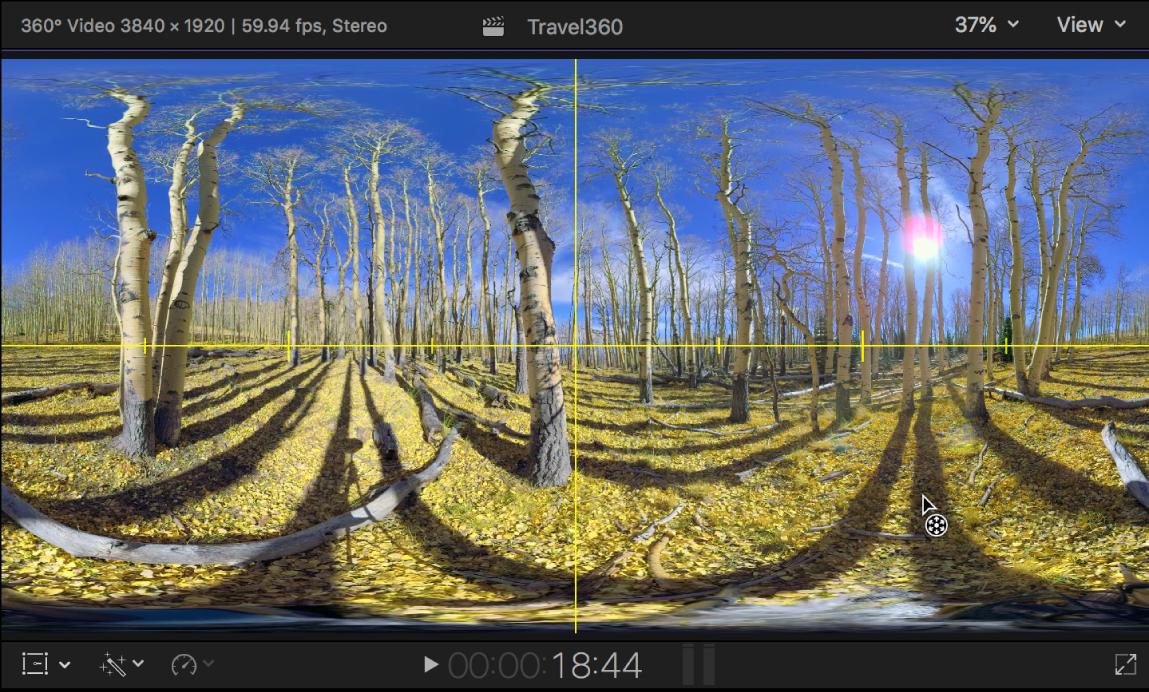 360°ビデオクリップに黄色の「水平線」ガイドラインが表示されているビューア