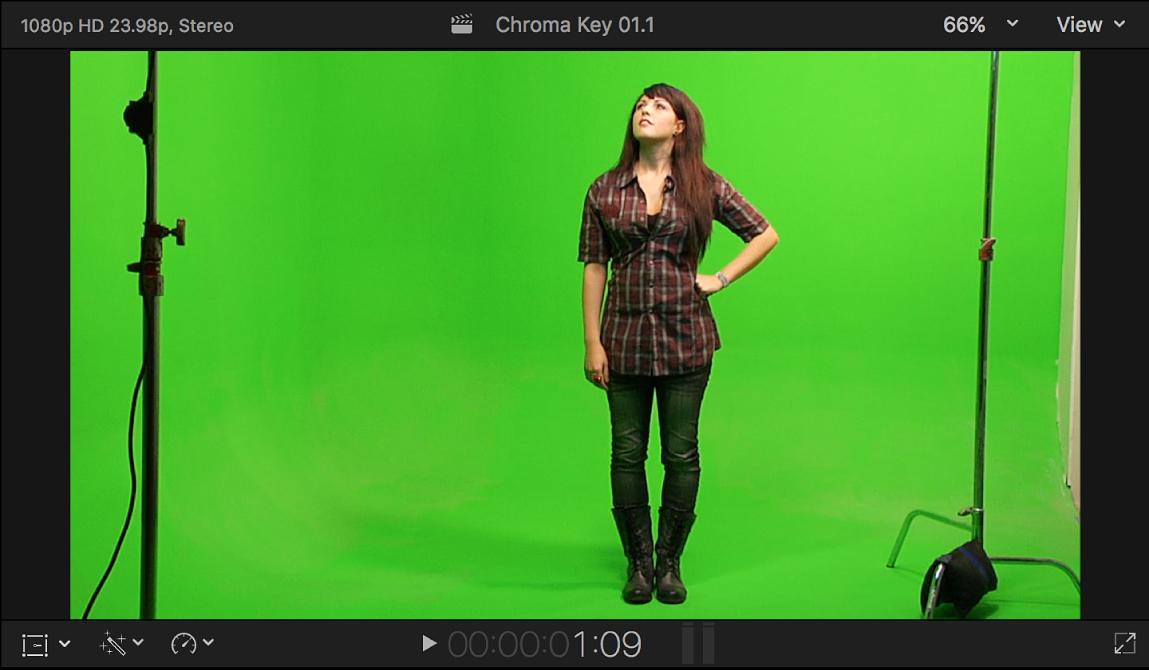 ビューアに、緑を背景にして立つ人物のクロマキー前景ビデオが表示されている