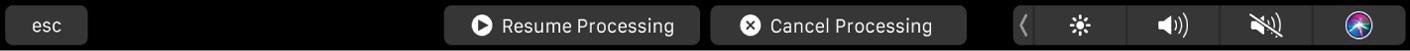 Conjunto de botones de la pestaña Activo cuando el proceso está en pausa