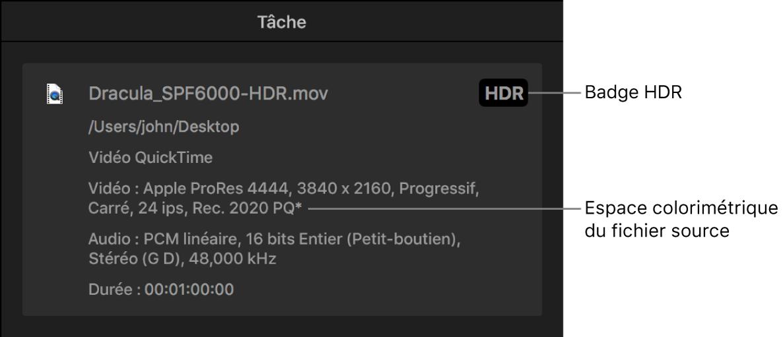 Inspecteur de tâche affichant une pastille HDR et l'espace colorimétrique du fichier vidéo source.