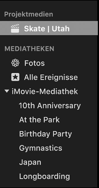 """Ein unter """"Projektmedien"""" in der Seitenleiste ausgewähltes Projekt"""