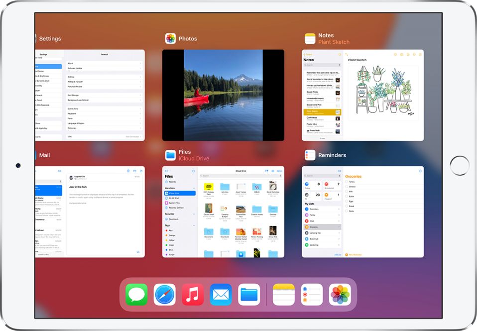 The App Switcher display with multiple apps showing.
