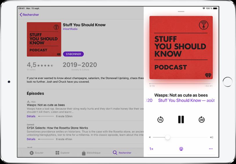 Une page de résultats pour la recherche de podcasts remplit l'écran. Un podcast est en cours de lecture à droite de l'écran et les commandes du lecteur s'affichent sous l'image de couverture du podcast.