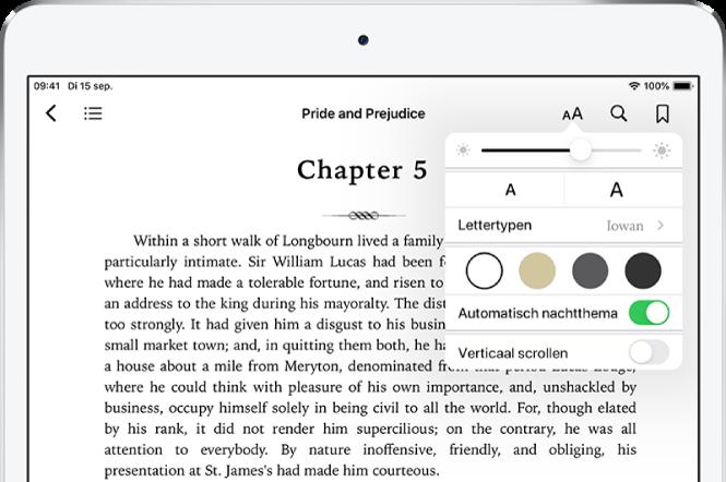 Het weergavemenu in een boek is geselecteerd, met van boven naar beneden knoppen voor helderheid, lettergrootte, lettertype, paginakleur, automatisch nachtthema en schuifweergave.