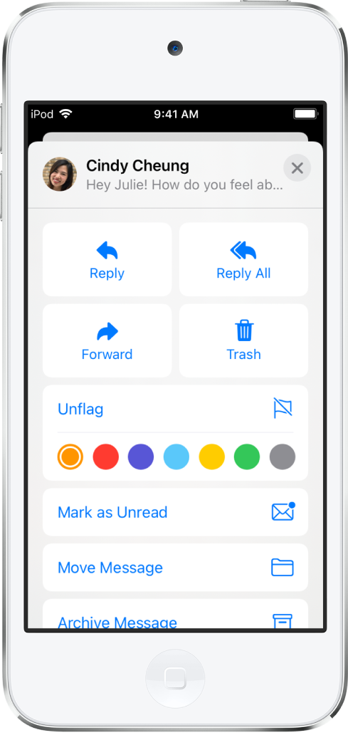 An email showing reply options underneath. Below those options are the color choices for flags.
