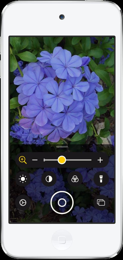 Lupe-skjermen som viser et nærbilde av en blomst.