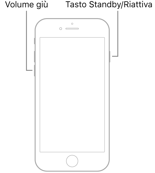 Immagine di iPhone7 con lo schermo rivolto verso l'alto. Il tasto per abbassare il volume è a sinistra, mentre il tasto Standby/Riattiva è a destra.