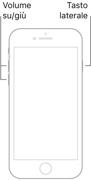 Un'illustrazione di un modello di iPhone con tasto Home con lo schermo rivolto verso l'alto. I tasti per alzare e abbassare il volume sono sul lato sinistro del dispositivo, mentre il tasto laterale è sul lato destro.