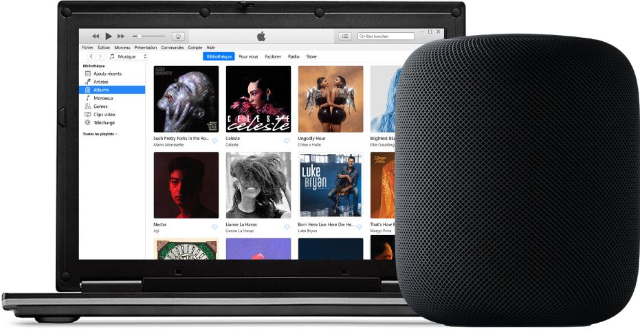 Un PC avec iTunes à l'écran et un HomePod à proximité.