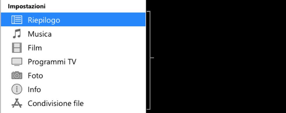 La voce Riepilogo selezionata nella barra laterale a sinistra. I tipi di contenuti mostrati potrebbero variare, a seconda del dispositivo e dei contenuti della libreria di iTunes.