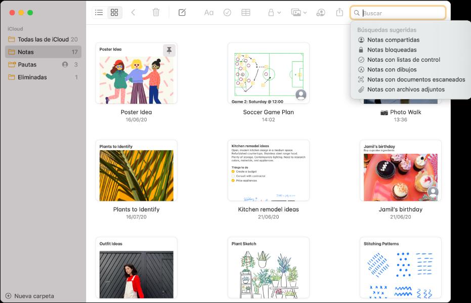 La visualización como galería de Notas, mostrando el contenido de cada nota en una miniatura. Las búsquedas sugeridas aparecen en la esquina superior derecha, por ejemplo, notas bloqueadas y notas con archivos adjuntos.