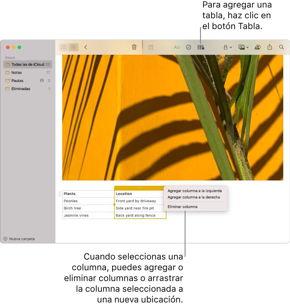 La ventana de Notas mostrando el botón Tabla que sirve para agregar una tabla. Dentro del contenido de la nota, se selecciona una columna de la tabla para poder agregar o eliminar columnas, o arrastrar una columna a otra ubicación.