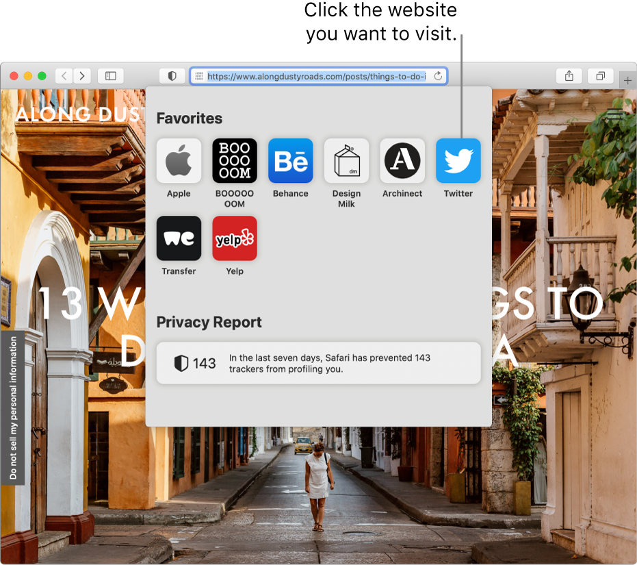 The Safari Smart Search field; below it is the start page showing Favorites and a Privacy Report summary.