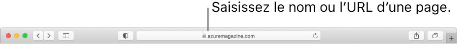 Le champ de recherche intelligente de Safari, dans lequel vous pouvez saisir le nom ou l'URL d'une page.