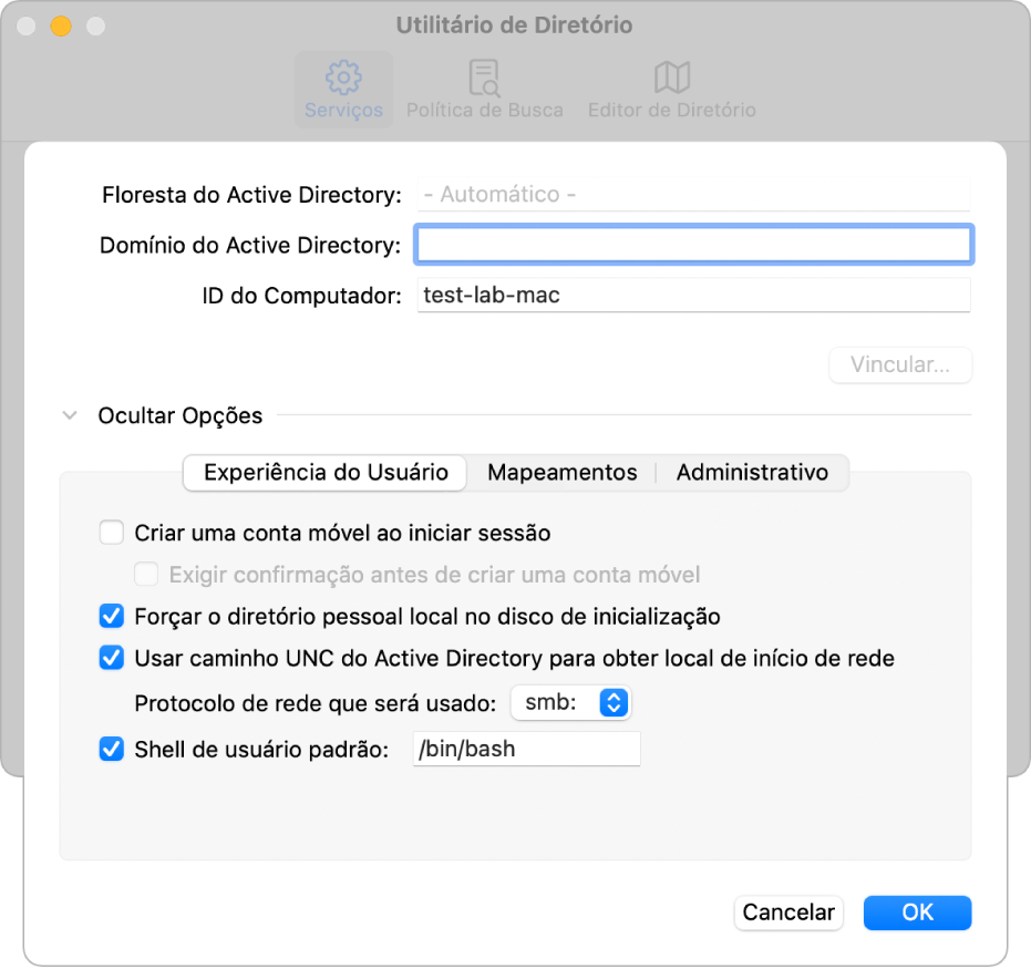 Diálogo de configuração do Active Directory com a seção de opções expandida.