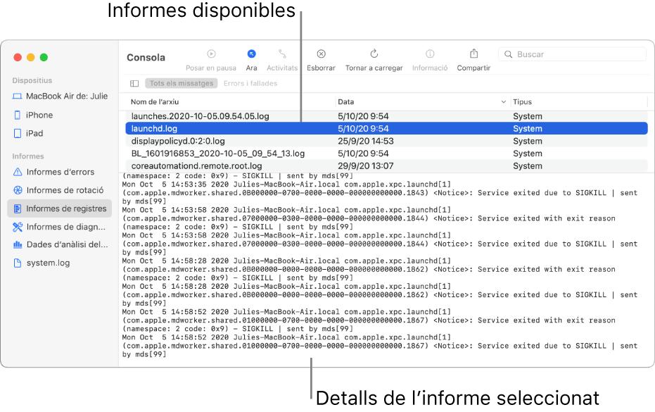 Finestra de la Consola que mostra les categories d'informes a la barra lateral, els informes a la part superior i a la dreta de la barra lateral, i els detalls dels informes a sota.