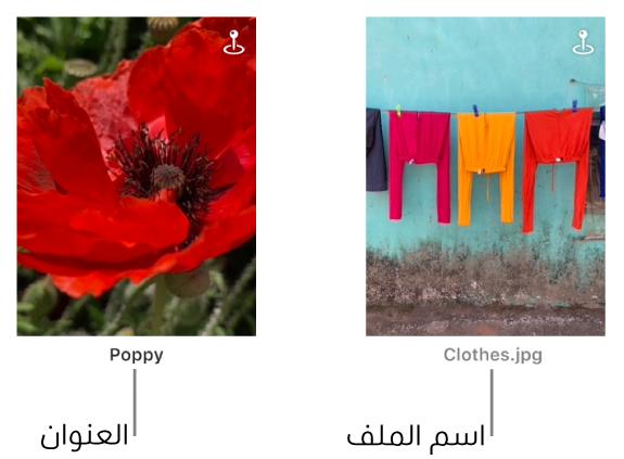 صورتان، تُظهر إحداهما عنوانًا أدناها وتظهر الأخرى اسم ملف أدناها.