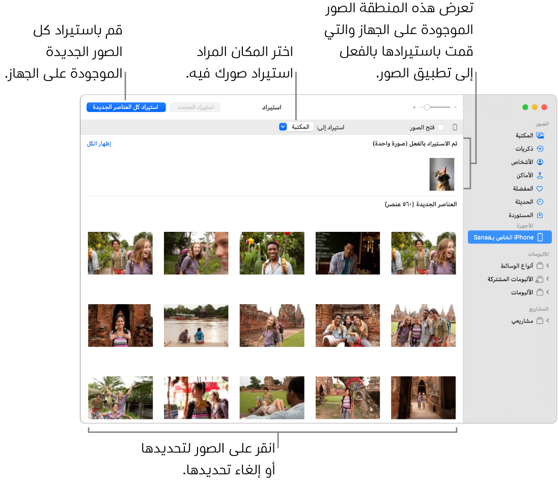 """الصور التي قمت باستيرادها من الجهاز تظهر في الجزء العلوي؛ والصور الجديدة في الجزء السفلي. وفي منتصف الجزء العلوي تظهر القائمة المنبثقة """"استيراد إلى"""". يظهر زر استيراد كل العناصر الجديدة في أعلى اليسار."""