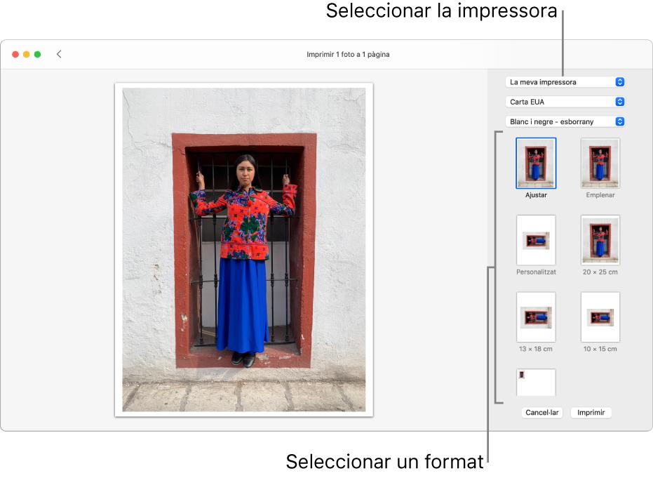 Una finestra per seleccionar les opcions d'impressió que mostra una àrea de previsualització d'impressió a l'esquerra i les opcions d'impressió a la dreta.