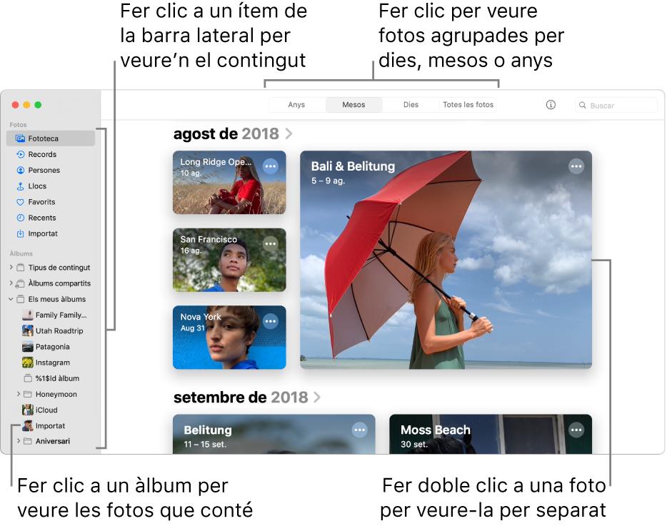 La finestra de l'app Fotos que mostra la vista Mesos seleccionada a la barra d'eines i les fotos organitzades per mes a la secció principal de la finestra. A l'esquerra hi ha la barra lateral, on pots seleccionar els àlbums i els projectes.