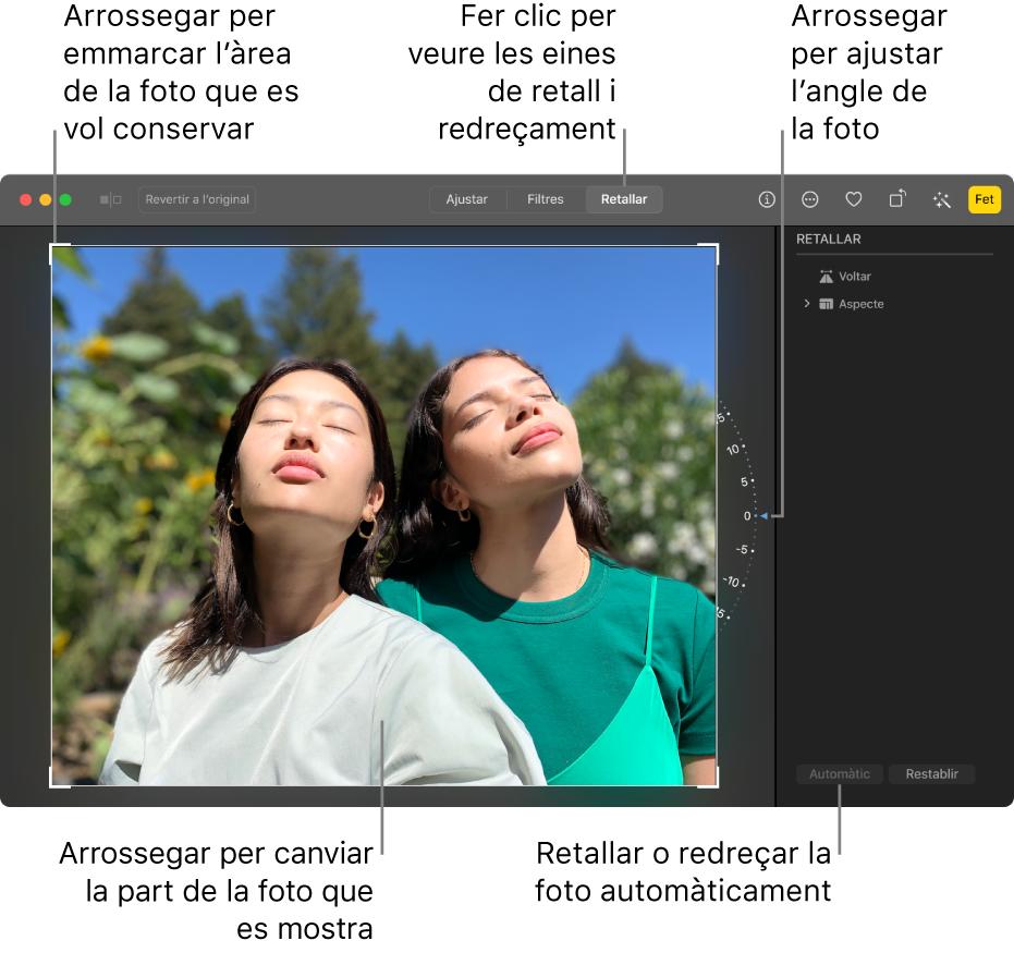 Una foto en la vista d'edició, amb l'opció Retallar seleccionada a la barra d'eines, un rectangle de selecció al voltant de la foto, una roda d'inclinació a la dreta de la foto i el boto Automàtic a la part inferior dreta.