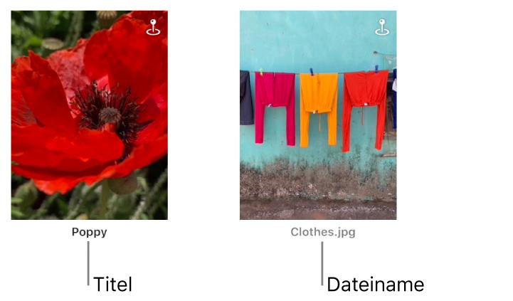 Zwei Fotos, unter dem einen wird ein Titel, under dem anderen ein Dateiname angezeigt.