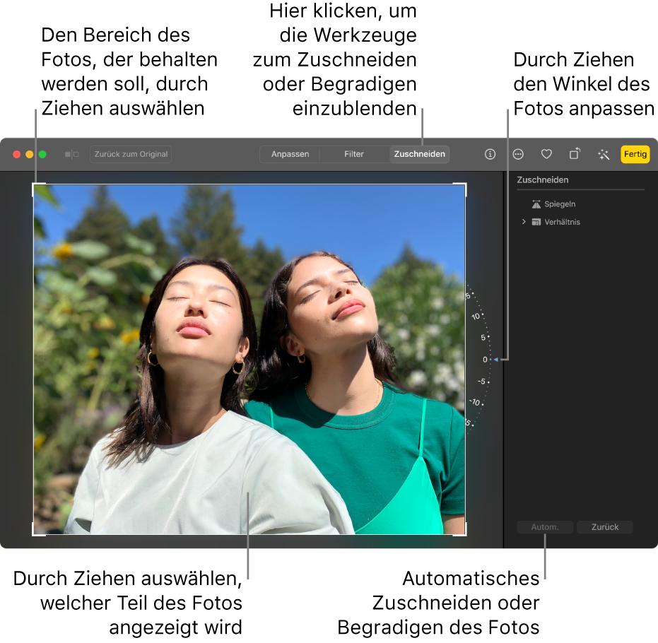 """Ein Foto in der Bearbeitungsansicht mit dem ausgewählten Werkzeug """"Zuschneiden"""" in der Symbolleiste, einem Auswahlrahmen um das Foto, einem Rad rechts neben dem Foto und der Taste """"Autom."""" unten rechts."""