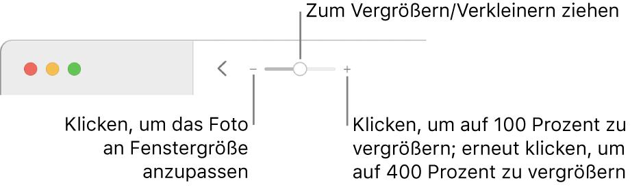 Die Symbolleiste mit den Zoomsteuerungen.