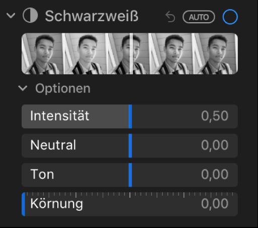 """Die im Bereich """"Anpassen"""" unter """"Schwarzweiß"""" angezeigten Regler sind: Intensität, Neutral, Ton und Körnung."""