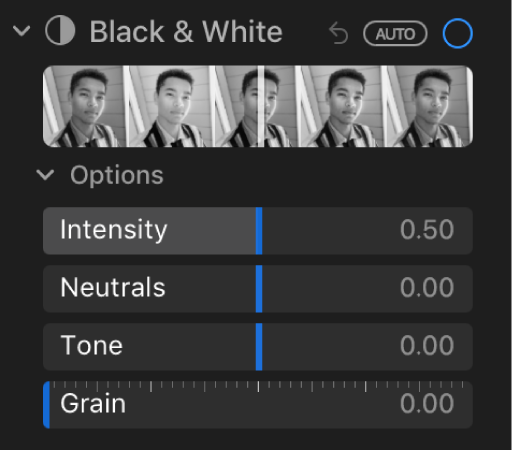 The Black & White area of the Adjust pane showing sliders for Intensity, Neutrals, Tone and Grain.
