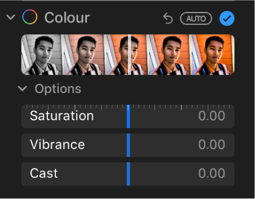 The Colour area of the Adjust pane showing sliders for Saturation, Vibrance and Cast.