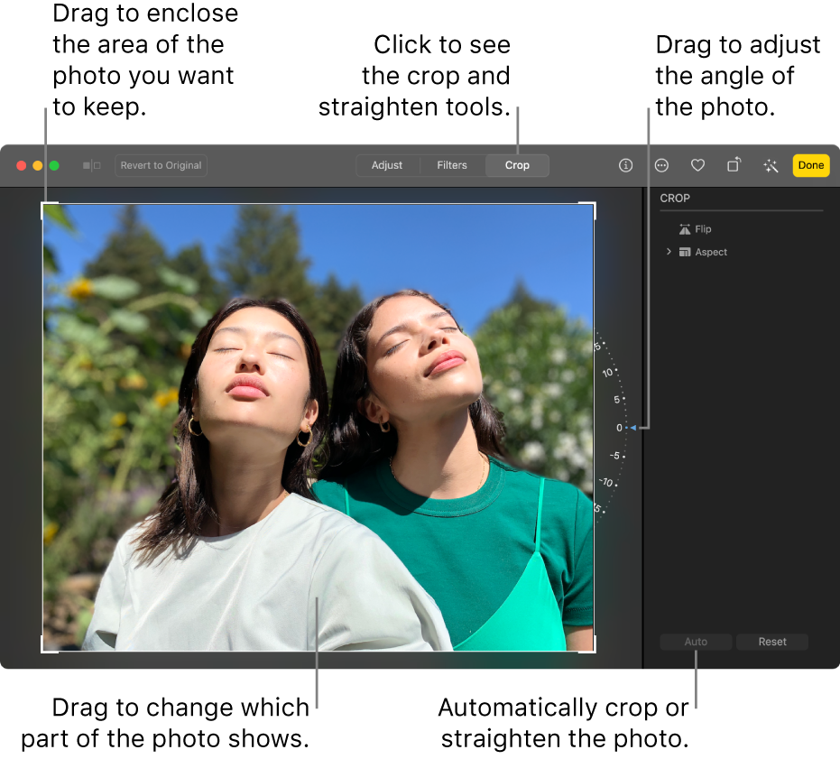 A photo in editing view, with Crop selected in the toolbar, a selection rectangle around the photo, a tilt wheel to the right of the photo and an Auto button at the bottom right.