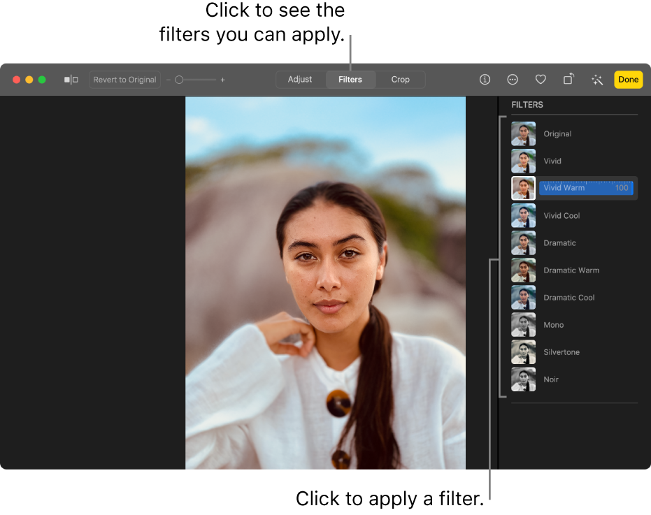 The photo in editing view, with Filters selected in the toolbar and filter options on the right.