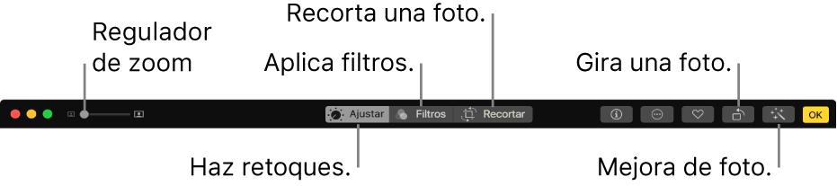 La barra de herramientas de edición mostrando un regulador de zoom y botones para realizar ajustes, agregar filtros, recortar fotos y mejorar fotos.