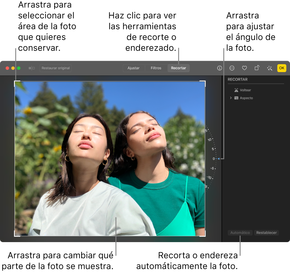 Una foto en la vista de edición con la herramienta Recortar en la barra de herramientas, un rectángulo de selección alrededor de la foto, una rueda de inclinación a la derecha de la foto y el botón Automático en la parte inferior derecha.