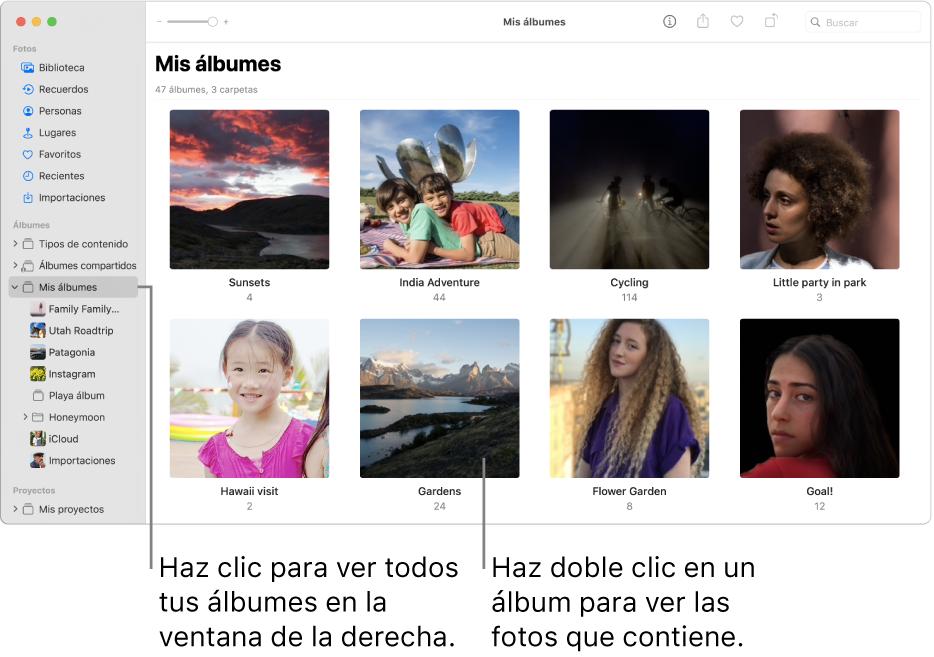"""La ventana de Fotos con """"Mis álbumes"""" seleccionado en la barra lateral, y los álbumes que creaste se muestran en la ventana a la derecha."""