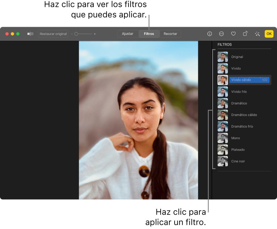 La foto en la vista de edición con la herramienta Filtros seleccionada en la barra de herramientas y opciones de filtros a la derecha.