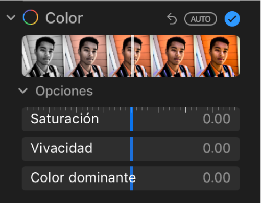 """El área Color del panel Ajustar mostrando los reguladores de Saturación, Vivacidad y """"Color dominante""""."""