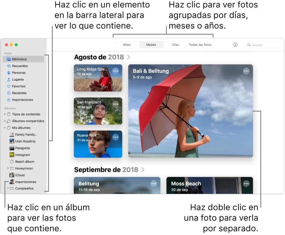 La ventana Fotos mostrando la opción Meses seleccionada en la barra de herramientas y las fotos organizadas por mes aparecen en el área principal de la ventana. La barra lateral se encuentra a la izquierda, en ella puedes seleccionar álbumes y proyectos.