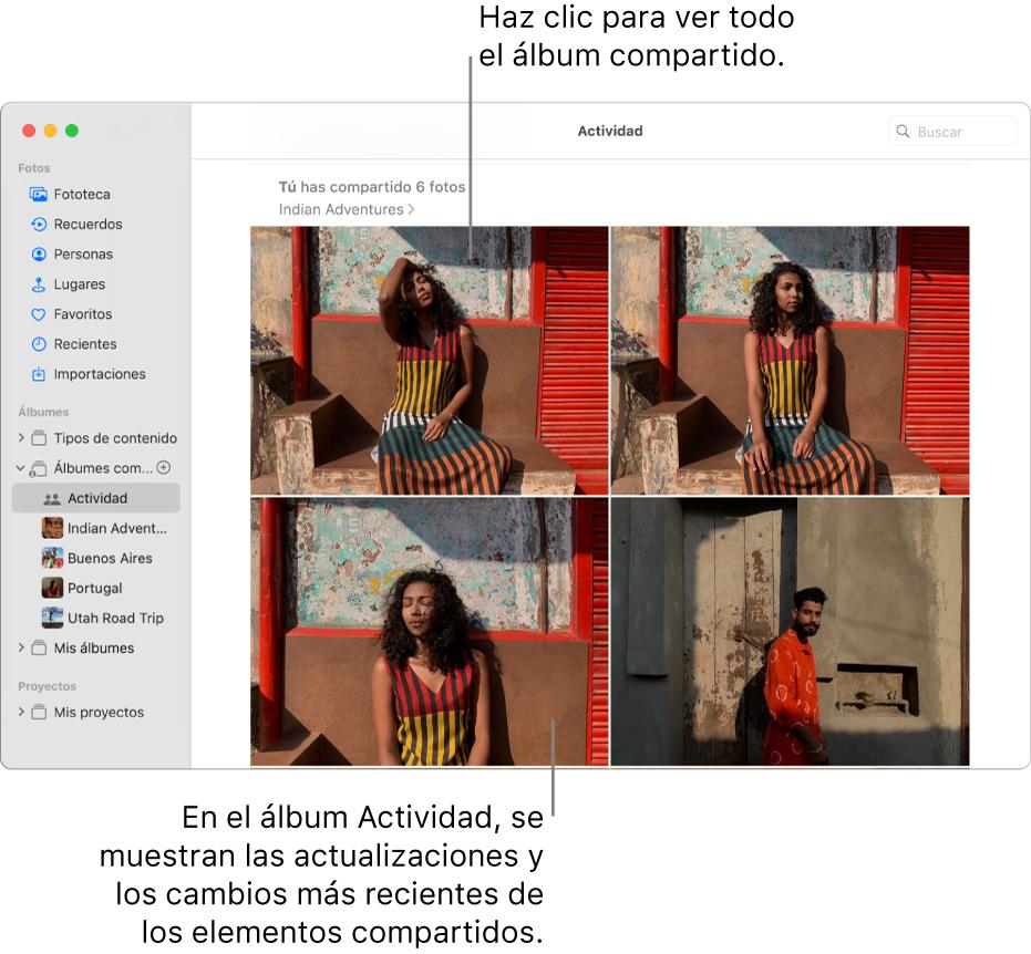 La ventana Fotos con Actividad seleccionado en la barra lateral y el álbum Actividad mostrado a la derecha.