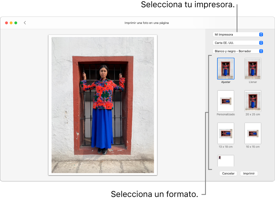 Una ventana para seleccionar opciones de impresión, con una zona de previsualización de impresión a la izquierda y opciones de impresión a la derecha.