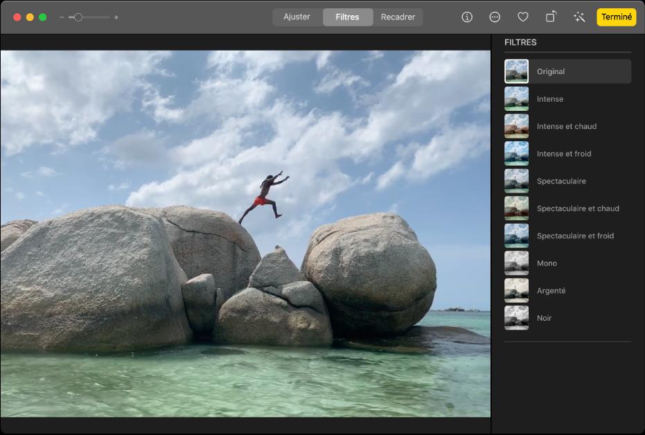 Un clip vidéo en mode édition, avec Filtres sélectionné en haut de la fenêtre Photos et la sous-fenêtre Filtres affichant les options de filtre.