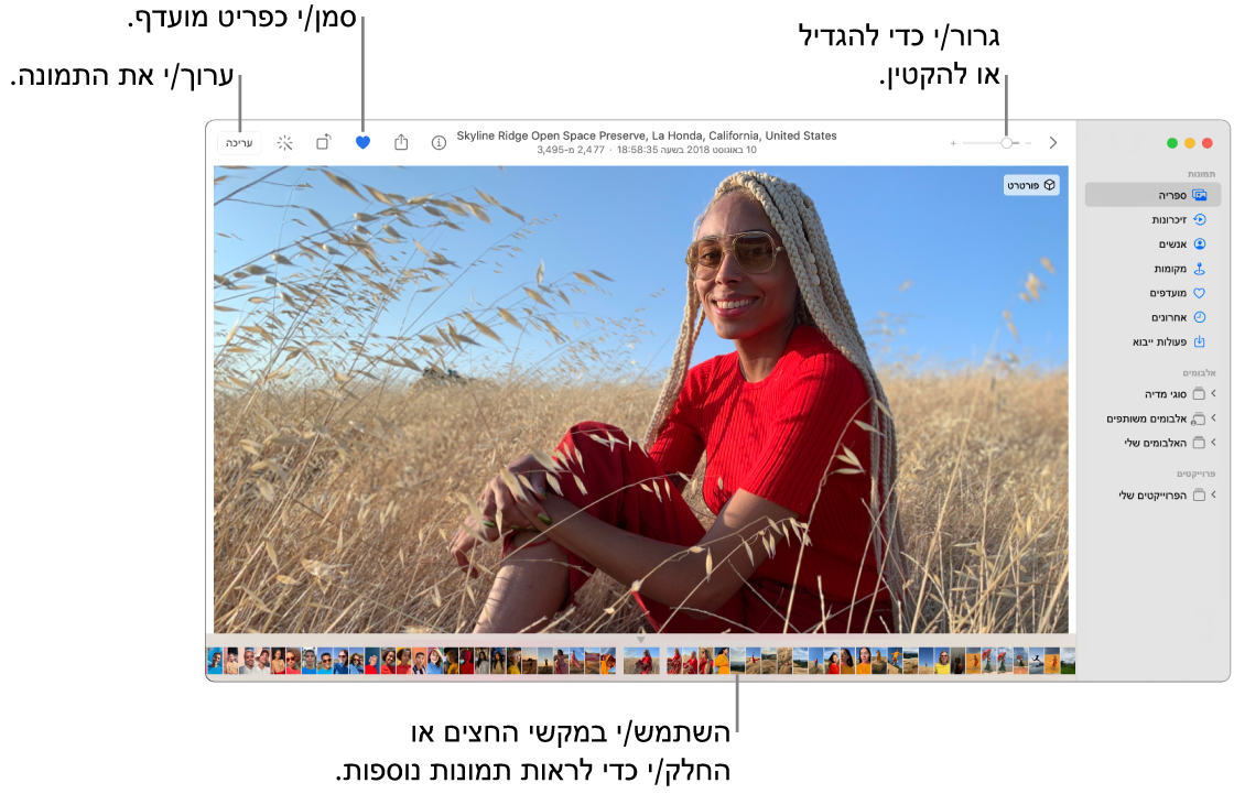 חלון ״תמונות״ מציג תמונה מוגדלת משמאל עם שורה של תמונות ממוזערות למטה. סרגל הכלים בראש המסך כולל את בורר ההגדלה, הכפתור ״מועדפים״ והכפתור ״ערוך״.