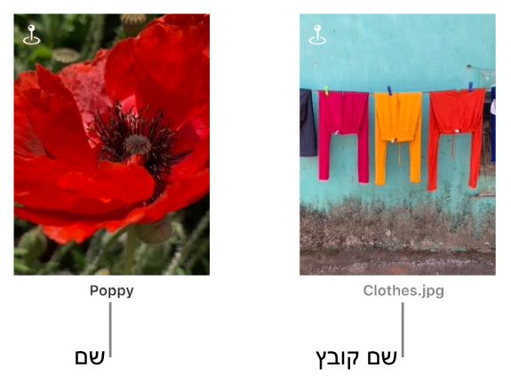 שתי תמונות, מתחת לאחת מופיעה כותרת ומתחת לשנייה מופיע שם קובץ.