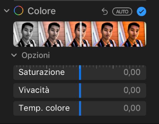 """L'area Colore del pannello Regola con i cursori Saturazione, Vivacità e """"Temp. colore""""."""