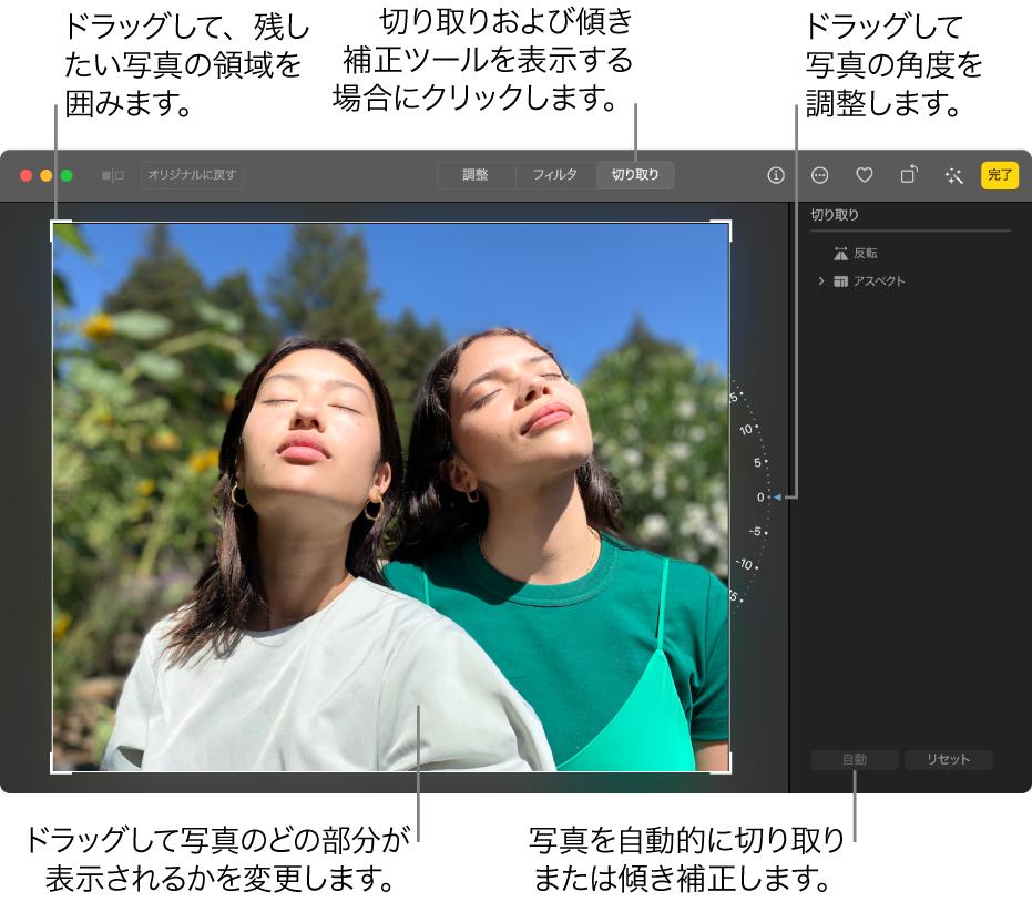 編集ビューの写真。ツールバーで「切り取り」が選択され、写真の周りに選択範囲の長方形、右側にチルトホイール、右下に「自動」ボタンがあります。