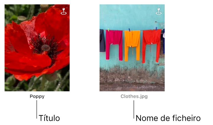 Duas fotografias, uma a mostrar um título sob uma delas e outra a mostrar um nome de ficheiro por baixo.
