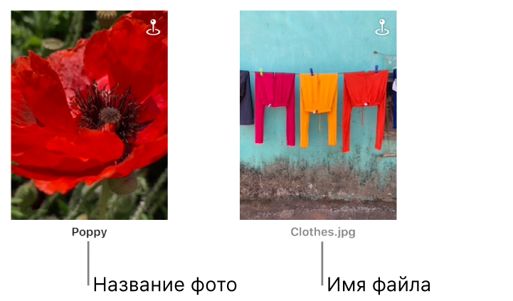Две фотографии: под одной показан заголовок, а под другой показано имя файла.