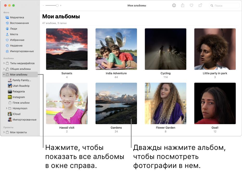 Окно приложения «Фото»: в боковом меню выбрана папка «Мои альбомы», а в окне справа отображаются созданные Вами альбомы.