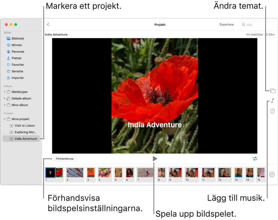 Bilder-fönstret med ett bildspel i huvuddelen av fönstret med förhandsvisningsknapp, uppspelningsknapp och loopknapp under huvudbilden för bildspelet, miniatyrer för alla bilder i bildspelet längst ned i fönstret samt knapparna för tema, musik och tidslängd till höger.